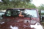 Jeep Wrangler Windshield