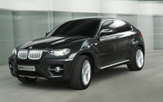 BMW X6 Windshield Replacement