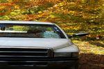 1995 Dodge 1500 Pickup 2 Door Standard Cab Windshield