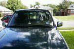 1995 Toyota T 100 2 Door Standard Cab Windshield