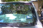 1998 Dodge 1500 Pickup 4 Door Quad Cab Windshield