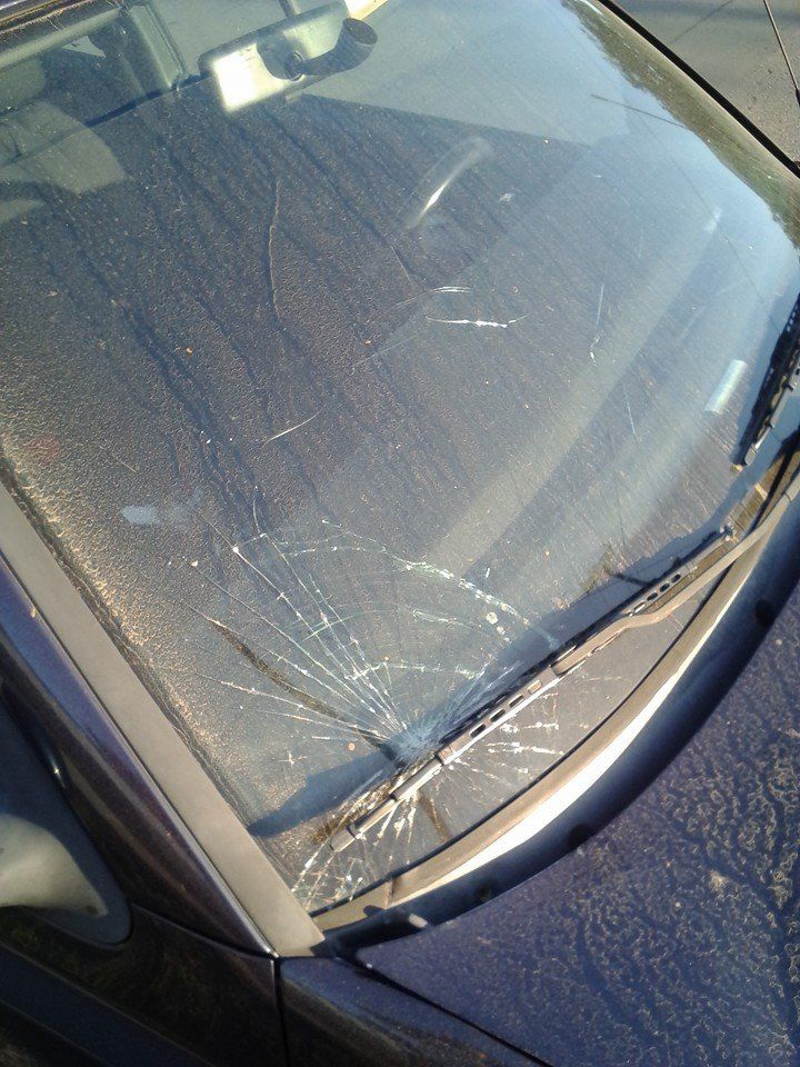 Volkswagen windshield replacement prices local auto for Window replacement quote