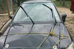 2004 Honda Civic 4 Door Sedan Windshield