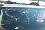 2007 Suzuki Grand Vitara Windshield