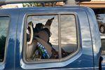 2011 Nissan Frontier Pickup 4 Door Crew Cab Rear Passenger's Side Door Glass